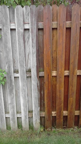 Fence, Before and After Wash